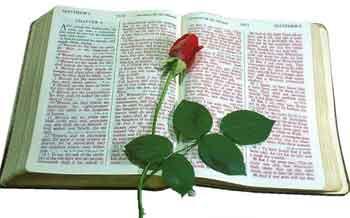 20080405175002-biblia.jpg