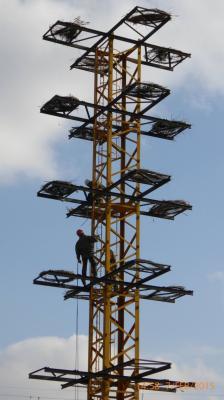 20150220102217-torre-con-los-nidos.jpg