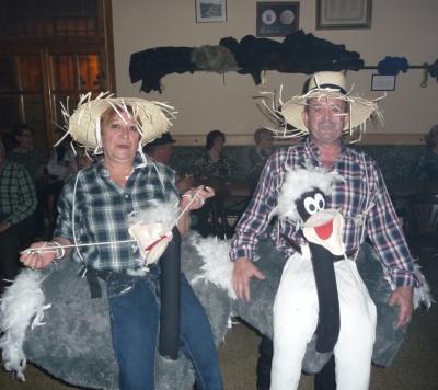 20150224174244-pareja-de-cisnes.jpg